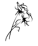 wedding_flower
